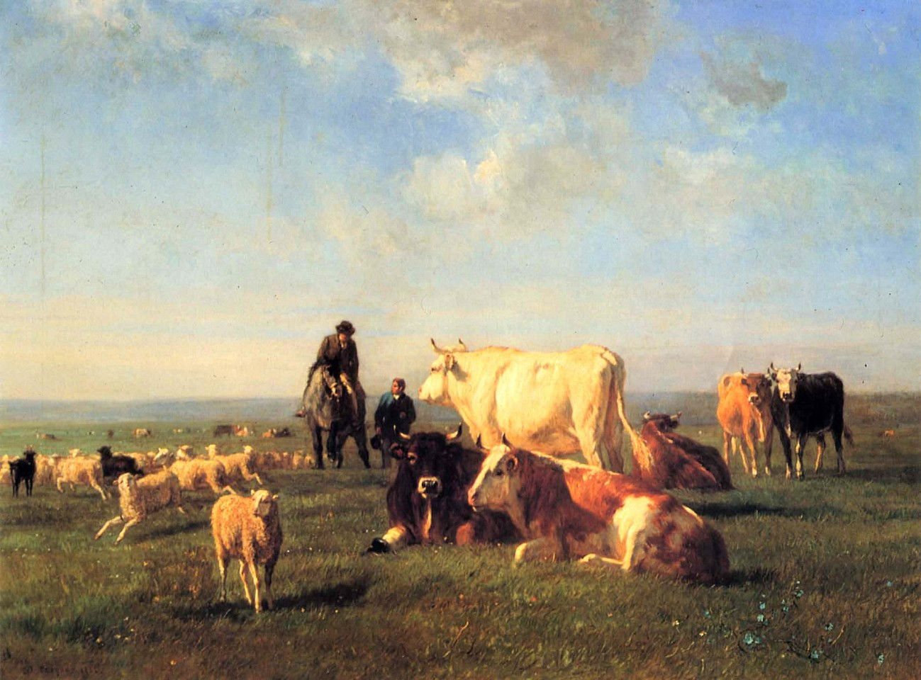 Constant Troyon ,   Cows and Sheep Grazing  ,  1862     Oil on canvas ,  31 1/2 x 42 1/2 in. (80 x 108 cm)     TRO-003-PA